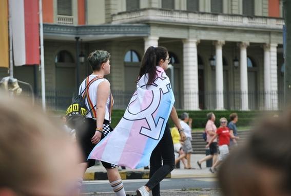 diputada propone ley trans travestis puedan jubilarse antes 40 anos 1
