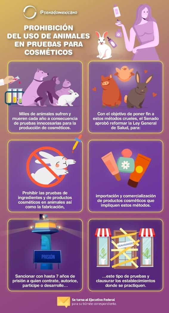 save ralph pruebas cosmeticas en animales 1