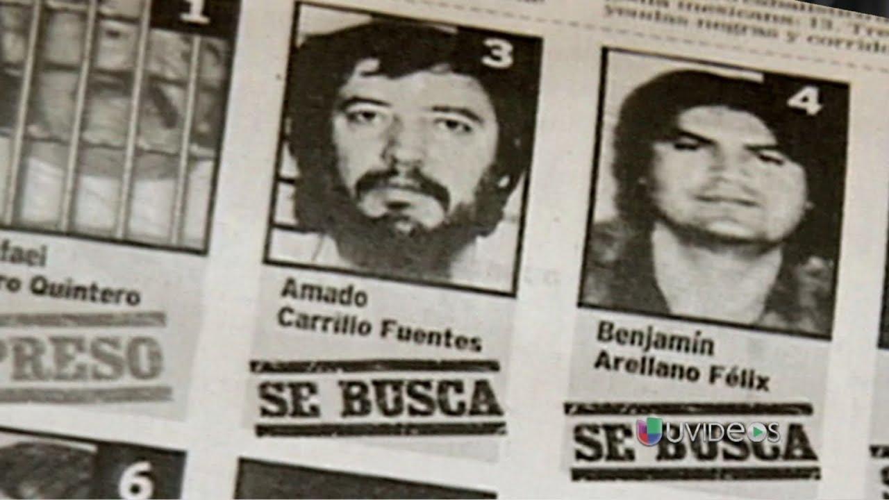 Quién Es Amado Carrillo Fuentes El Señor De Los Cielos Mexico