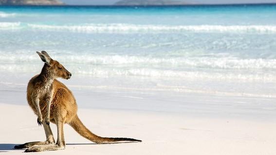 australia podria quedarse sin invierno ¡a partir del 2050