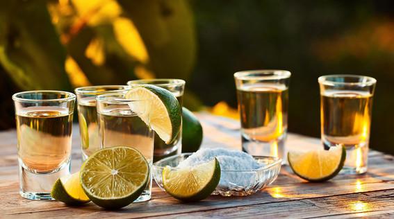 hoy celebra mexico el dia nacional del tequila