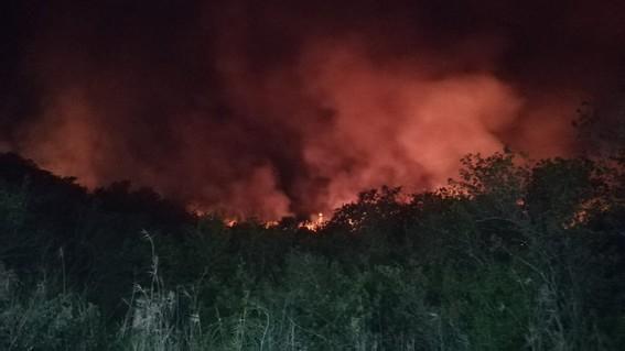 incendio de biosfera de los petenes campeche