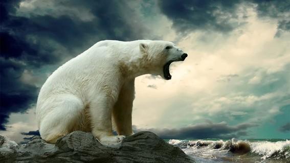 revelan que hay un millon de especies en peligro de extincion