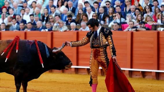 torero limpia lagrimas a toro poco antes de matarlo