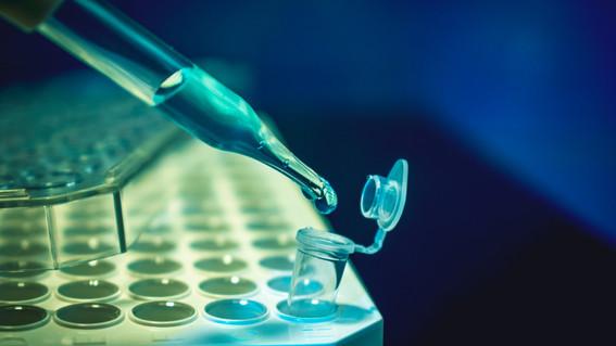 desarrollantecnicadeediciongeneticaqueevitamutaciones