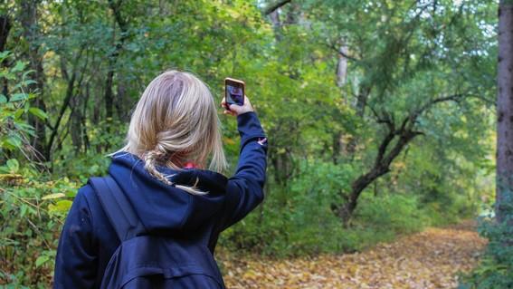 lo que debes saber sobre la economia de las selfies
