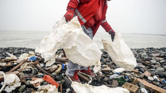 esta celebracion busca crear conciencia acerca del dano que causan las bolsas de plastico de un solo uso al medio ambiente ¡unete a la celebraci