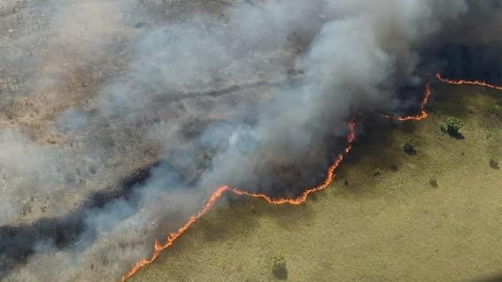 la conafor informo que ya son 2 mil 800 hectareas afectadas en la reseva de sian ka'an en donde del fuego ya fue controlado en un 90