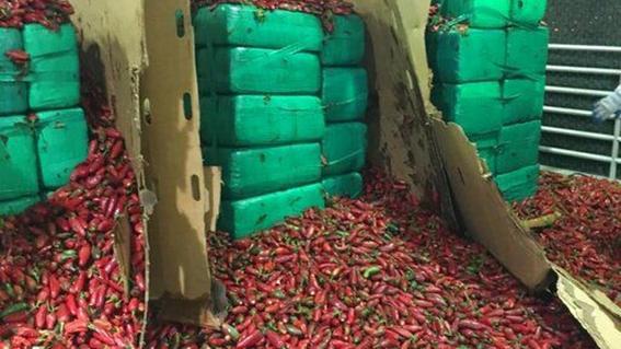 el aseguramiento de la droga oculta en el cargamento de chiles jalapenos asciende a unos 23 millones de dolares