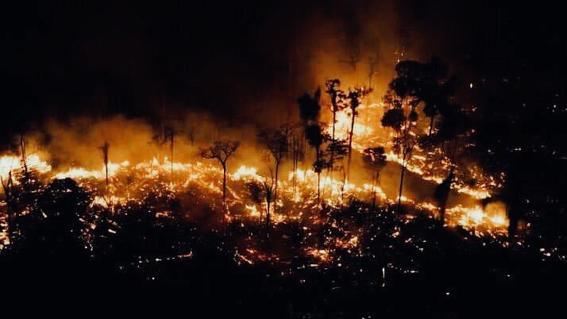 las selvas tropicales de la amazonia en brasil llevan 16 dias ardiendo a una velocidad record; expertos advierten sobre riesgos que provoca la de
