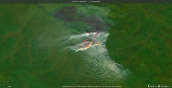 incendios siberia amazonas