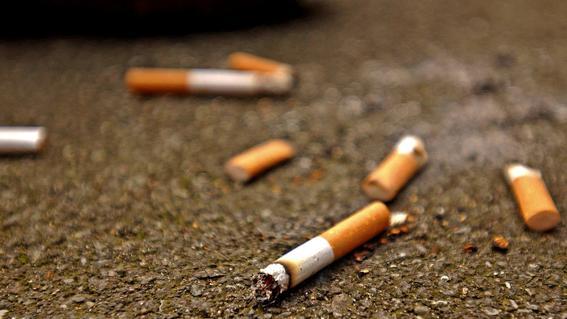 las colillas de cigarro en los oceanos son mas nocivas que los popotes ya que una sola puede contaminar hasta 50 litros de agua potable o 15 lit