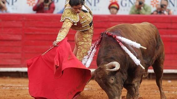 con consulta ciudadana amlo plantearia prohibir las corridas de toros
