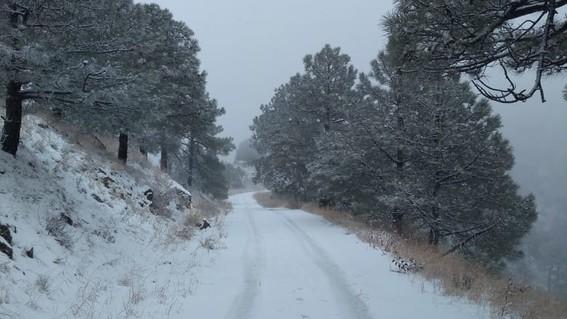 luego del ingreso del frente frio 16 el jueves 21 de noviembre cayo la primera nevada de la temporada en la sierra la mariquita en el municipio