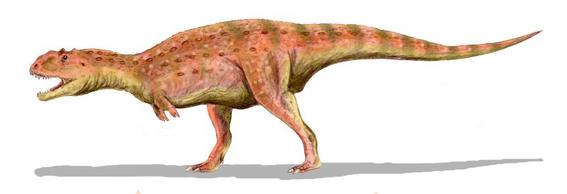 el majungasaurus reemplazaba todos sus dientes cada dos meses mas o menos un hecho sin precedentes entre los dinosaurios carnivoros