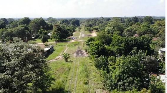 en enero proximo se realizara la primera licitacion y en marzo daran inicio las obras del tren maya que fue aprobado por comunidades indigenas y