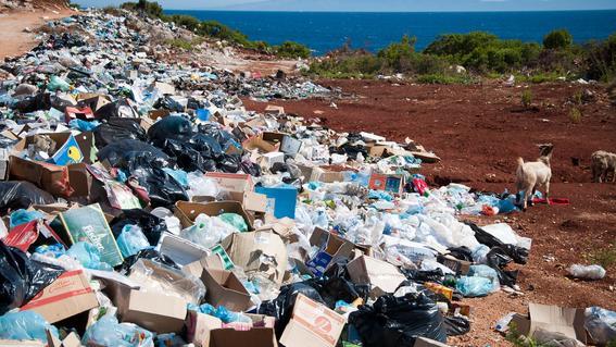 prohibicion de plasticos cdmx 2020