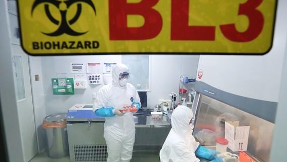 las autoridades han alertado a la poblacion sobre el virus relacionado con el sras descrito coloquialmente como una neumonia atipica