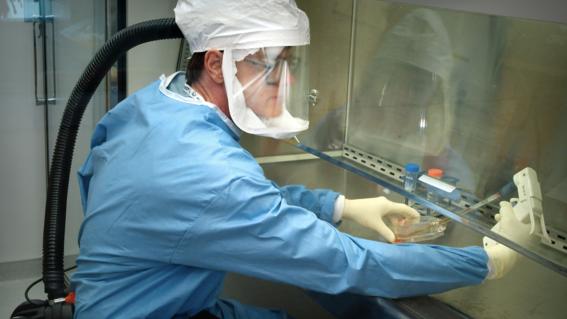 coronavirus transmision de persona a persona contagio coronavirus china