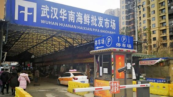 mercado wuham brote coronavirus wuham china