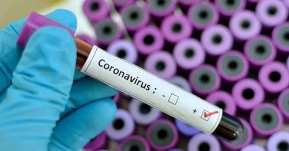 el subsecretario de salud hugo lopezgatell aseguro que el coronavirus no representa una amenaza en terminos sanitarios ni terminos sociales o e