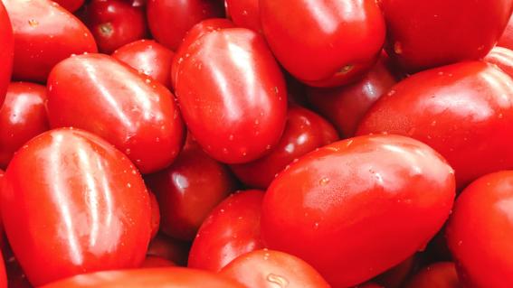 precio del tomate y jitomate precios mexico profeco