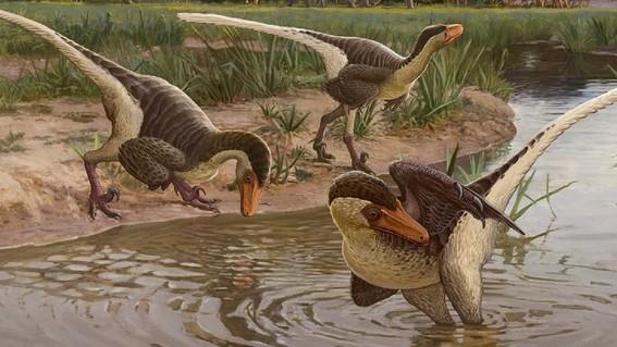 el nuevo dinosaurio emplumado que vivio en nuevo mexico hace 67 millones de anos es una de las ultimas especies de raptores sobrevivientes conoci