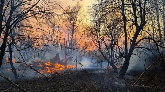 incendios chernobyl incendios en chernobyl