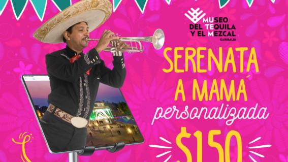 serenata virtual con mariachis 10 de mayo mutem