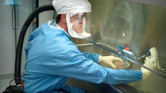 rusia anuncia lanzamiento de primera vacuna contra coronavirus en septiembre