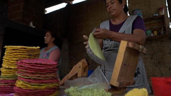 teopisca tortillas de colores