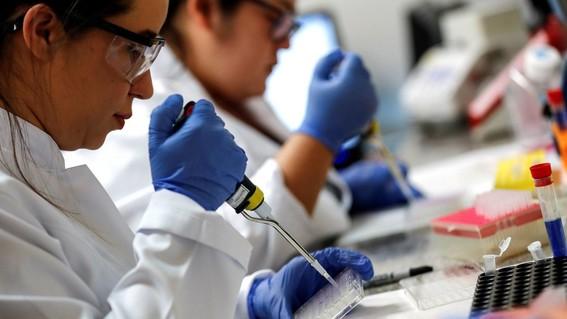 vacuna contra covid19 genera respuesta inmune en humanos