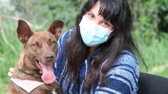 abren el primer crematorio de mascotas en la cdmx