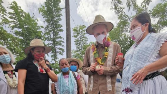 hugo lopez gatell come plantas medicinales pueblos indigenas