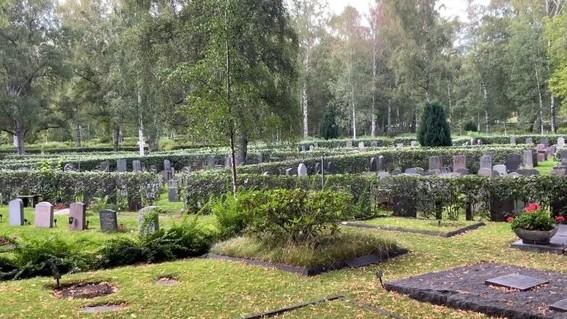 cementerio suecia ninos
