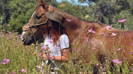cuacolandia fundacion que protege a caballos maltratados