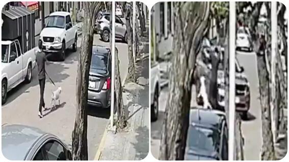 conductor atropella a joven alvaro obregon cdmx
