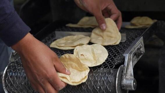subira 1 peso el kilo de tortilla en diciembre