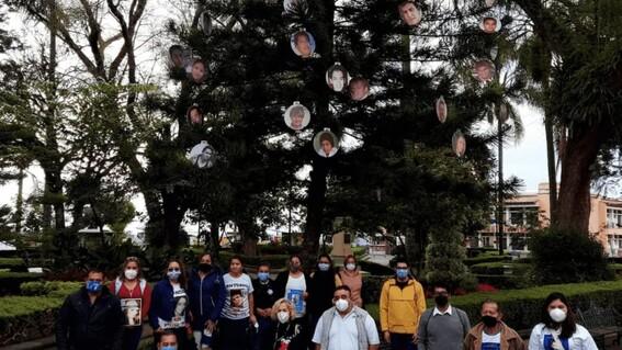 instalan arbol de navidad en veracruz con fotos de desaparecidos
