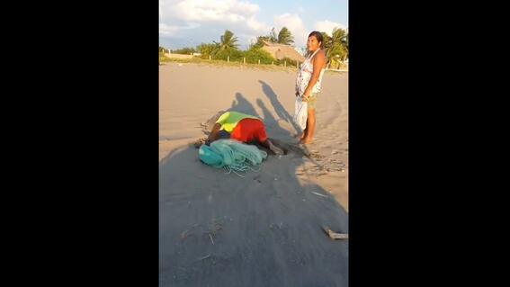 captan a pareja robando nido de tortuga en chiapas