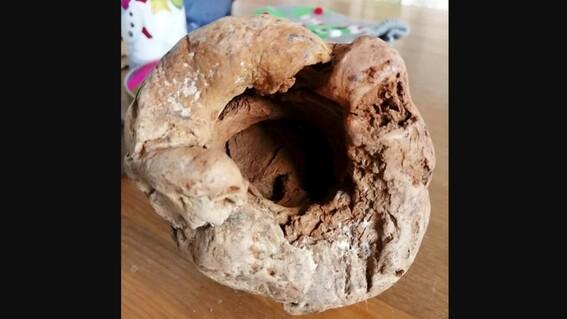 encuentran una granada de la segunda guerra mundial y les explota en la cocina
