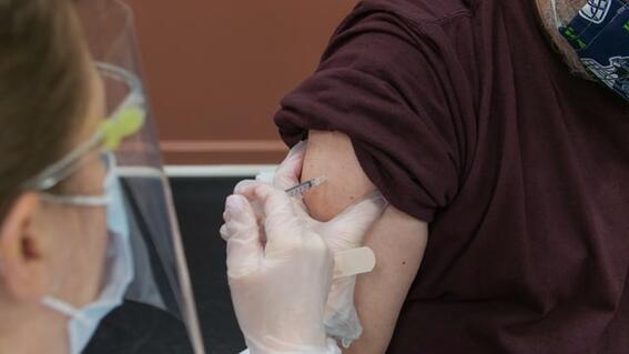 cofepris vacuna alemana curevac covid