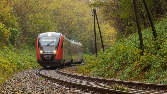 confirman suspension provisional del tren maya en yucatan