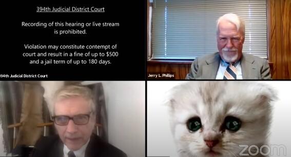 abogado se hace viral al no poder quitar filtro de gato en audiencia judicial virtual