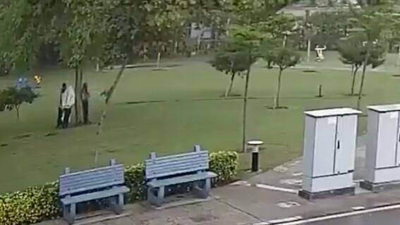 video rayo cae sobre cuatro personas que se refugiaban bajo un arbol; una murio