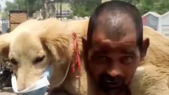 video hombre se quita cubrebocas para proteger a perro