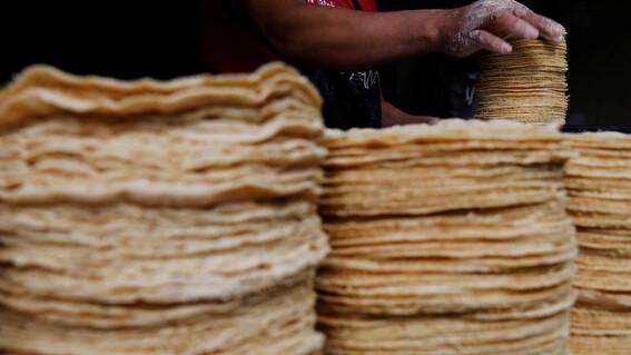 precio del kilo de tortilla podria subir hasta 25 pesos