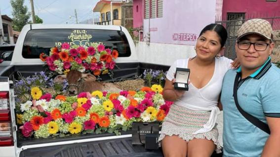 propuesta matrimonio becerro viral