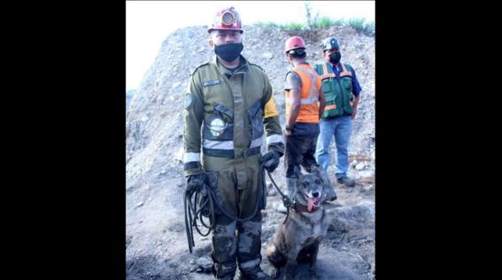 perritos mineros coahuila mina muzquiz