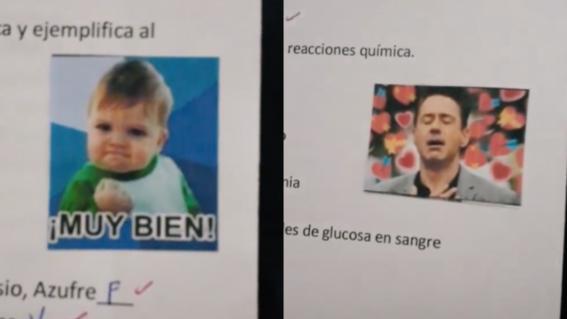 maestra memes